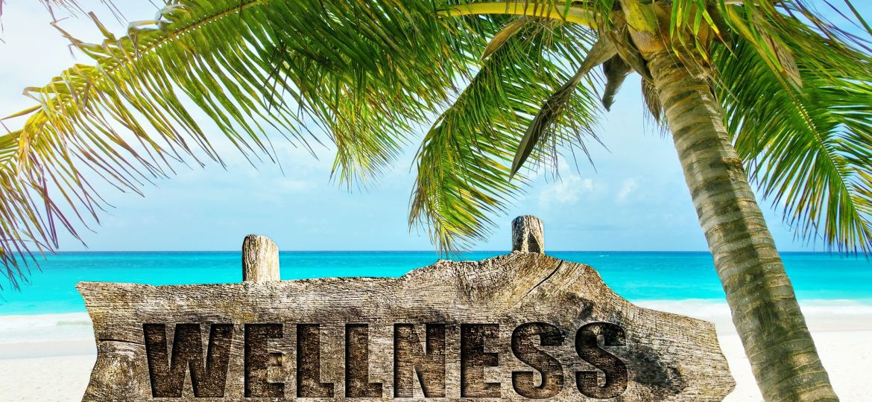 post antrenament wellness